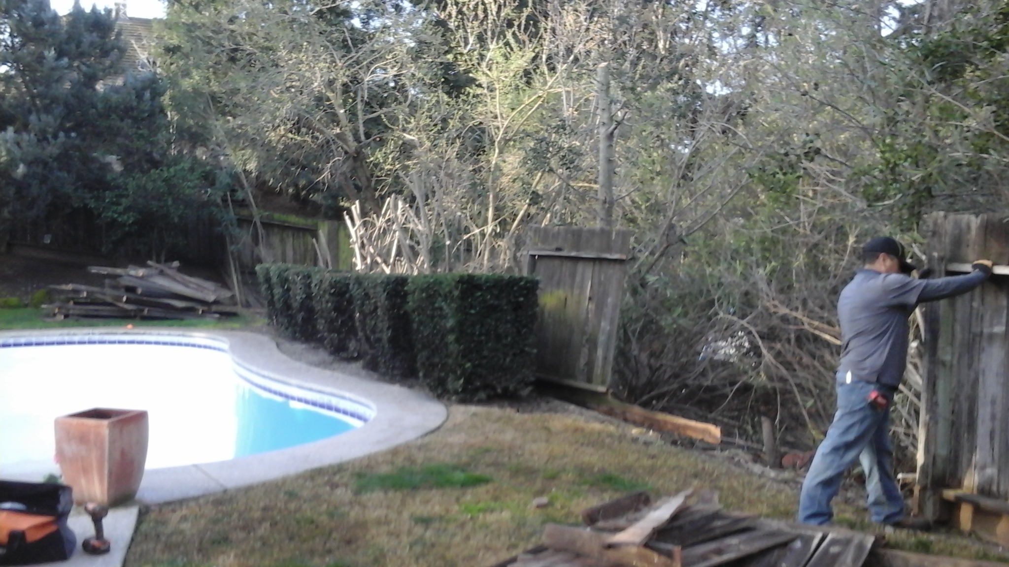 Landscaping of New Fence by Tovar Landscape Co. - Before