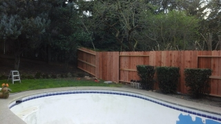 Landscaping of New Fence by Tovar Landscape Co. - After