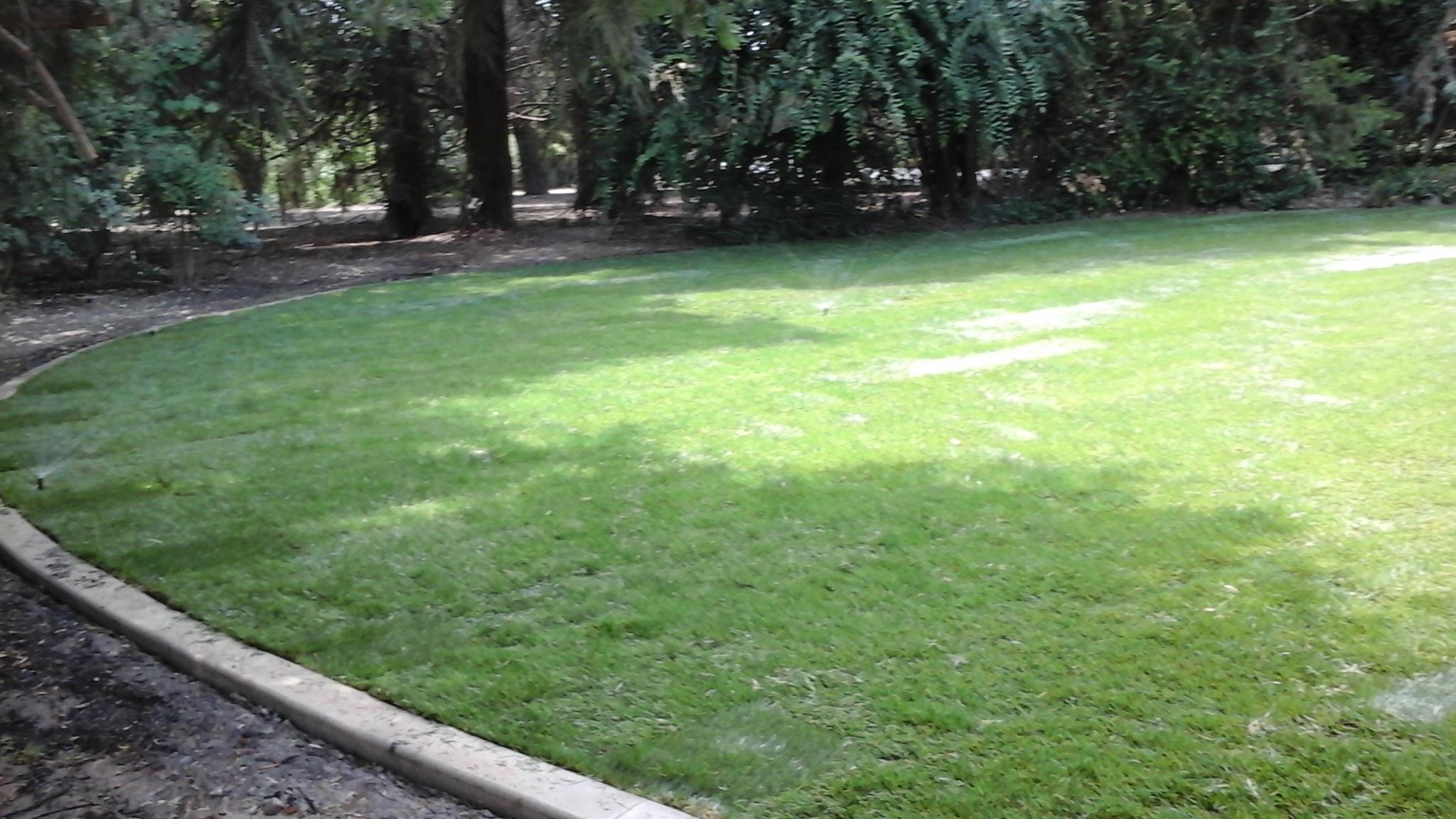 Landscaping by Tovar Landscape Co. - Sod Installation