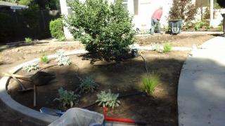 Landscaping by Tovar Landscape Co.